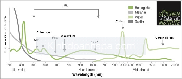 VCI_Laser_12ppA6.indd